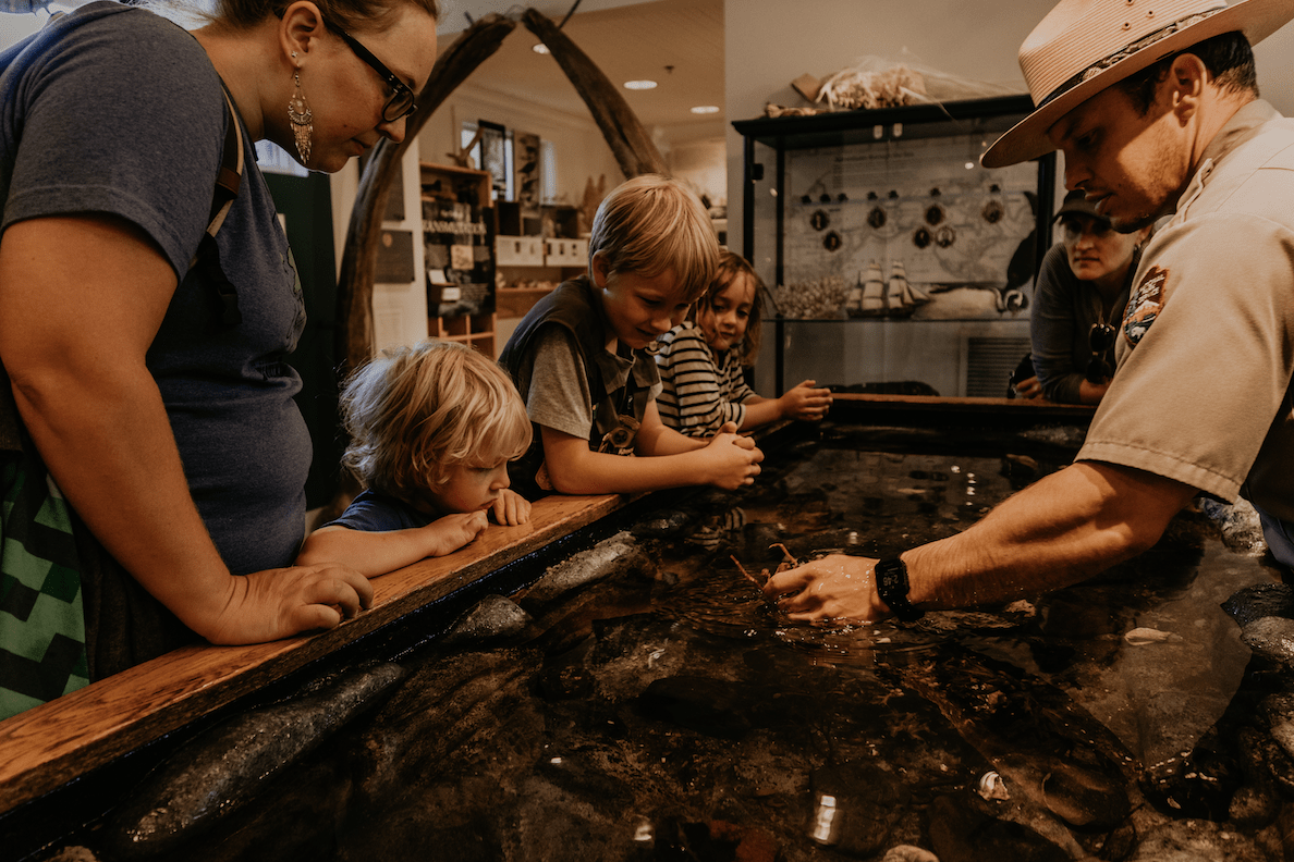 Two adults and three kids crowd around a tide pool inside a museum, watching as a park ranger puts hand into tide pool