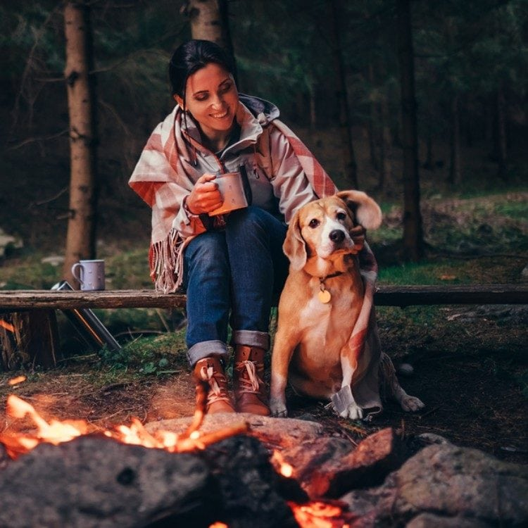 Bring Fido to These U.S. Campgrounds with Canine Amenities