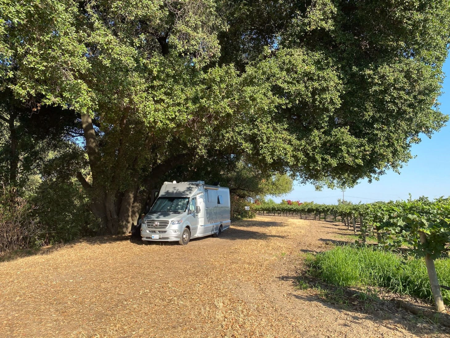 Sprinter van parked at campsite at winery